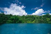 プリ・ウランダリのVillaから向かいのジャングル