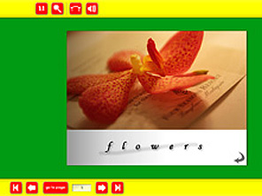 Picasa3+Flash Page Flip Galleryのカスタマイズ