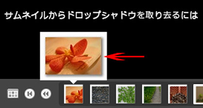 PicasaでDfgallery1.0のxmlと画像をエクスポート(4)
