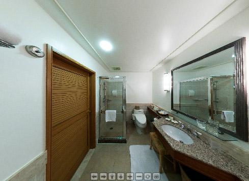 ザ・ブセナテラス:デラックス ナチュラル オーシャンビューのバスルーム