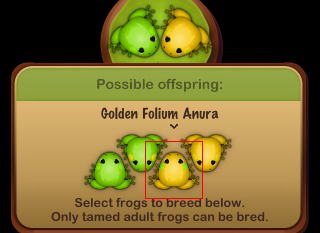 Golden Folium Anura を誕生させる