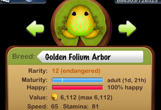 Golden Folium Arbor 誕生