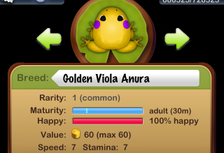 Golden Viola Anura 誕生