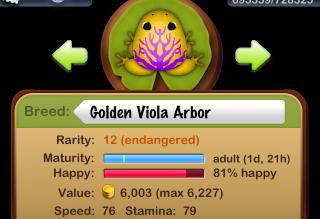 Golden Viola Arbor