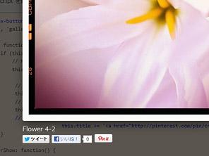 Fancybox 2 (Lightbox系jQueryプラグイン) で拡大された写真にソーシャルボタンを追加してみました