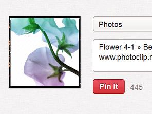 Fancybox 2にソーシャルボタンを!! 昨日のPinterestボタンの件は解決、、、したと思う
