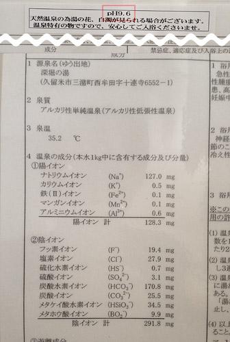 pH 9.6