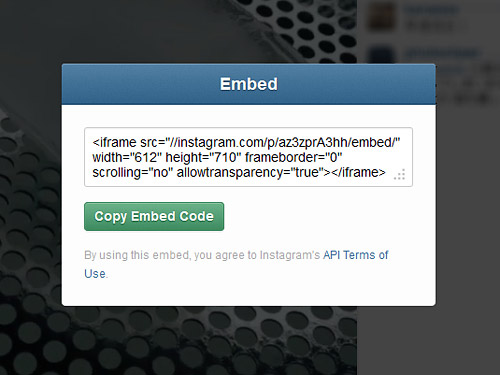 貼り付けるためのEmbed Codeが表示されるのでコピペするだけ