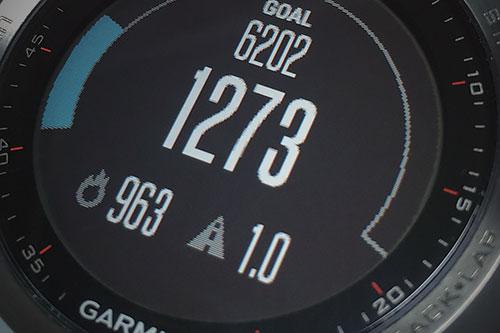 Garmin Fenix 3 浅いレビュー(12) Activity Trackingのステップ数はネギの小口切りでもカウントされる