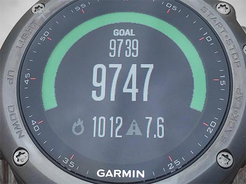Activity TrackingのGOALは現在9739