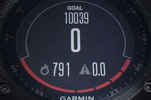 今日の目標ステップは10039