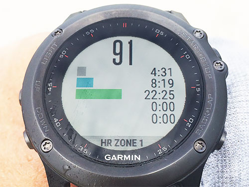 Heart Rate Zone Distributionを1項目表示