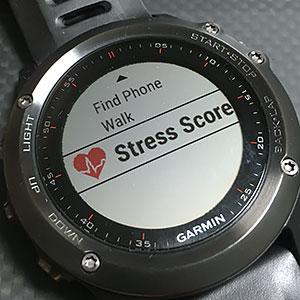 Stress Score