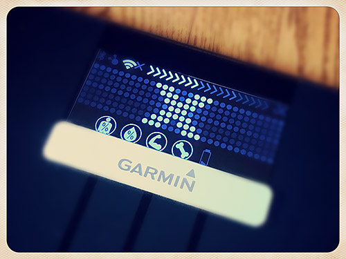 Garmin Index Smart Scale【その後】