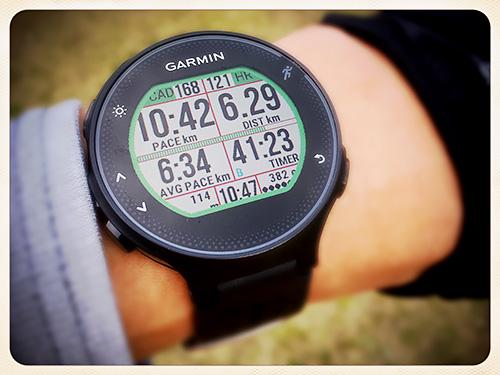 Garmin Forerunner 235 浅いレビュー(13) Data Screen一面に12項目「Dozen Run Field」