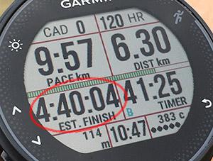 Finish タイム予測 フルの距離を設定している