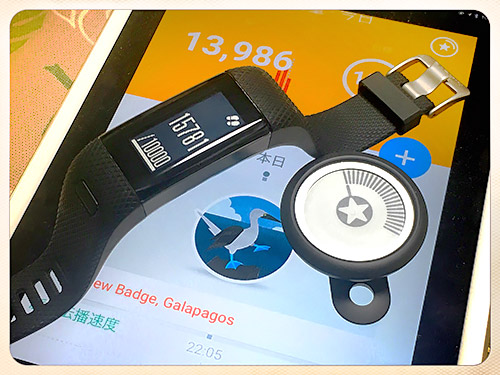 Withings GO (13986歩)& VSHR+ (15781歩)