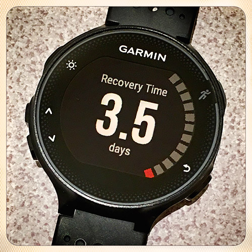 Garmin FR235「Recovery Time – 3.5days」なんて出るのか
