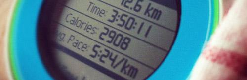 マラソンにハマったのもGarmin沼に落ちたのもこの頃(^_^;) 当時はFR610のMulti Colorか
